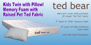 Kids Twin Ted Bear Bed with Pillow